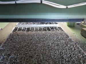Seeding Machine (2)